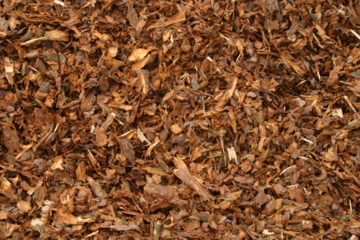 Why Does Mulch Smell?