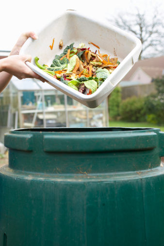 Compost Accelerator Recipe