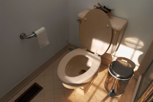 How to Set the Proper Toilet Flange Height