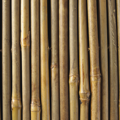 How To Cut Bamboo Poles In Half