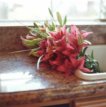 How Long Do Stargazer Lilies Take to Sprout?