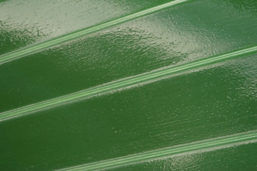 difference between exterior interior paint. the difference between semigloss \u0026 high-gloss paint exterior interior