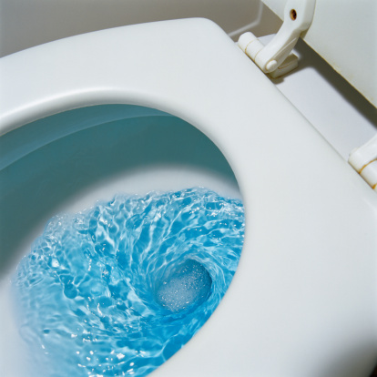My Toilet Doesn't Drain When Flushed