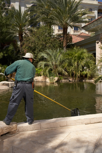 How To Kill Brown Algae In A Pool Hunker