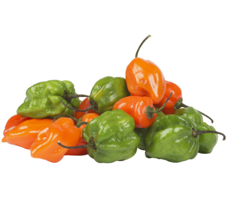 How Long Does It Take for Habanero Peppers to Grow?