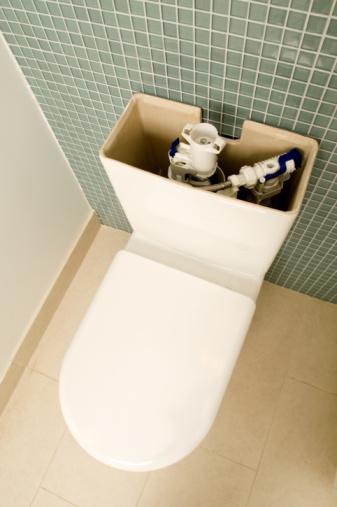 Can I Make My Toilet a Pressure Assisted Toilet?