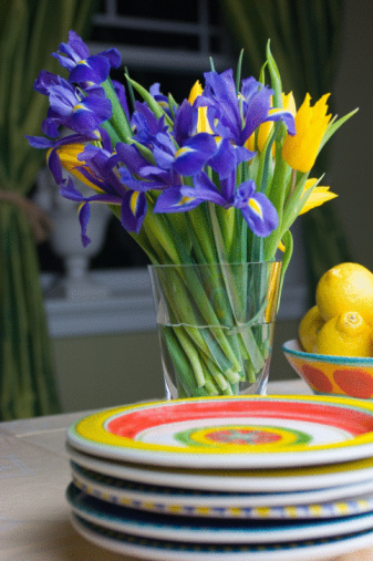 How Long Do Cut Iris Flowers Last?