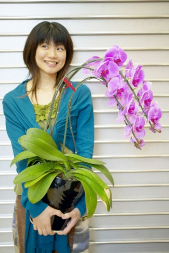 How to Trim a Dead Orchid Stem