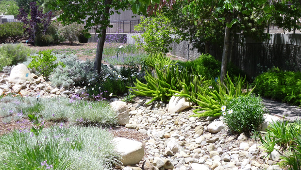 Design a Dry Riverbed Into Your Garden eHow Home eHow