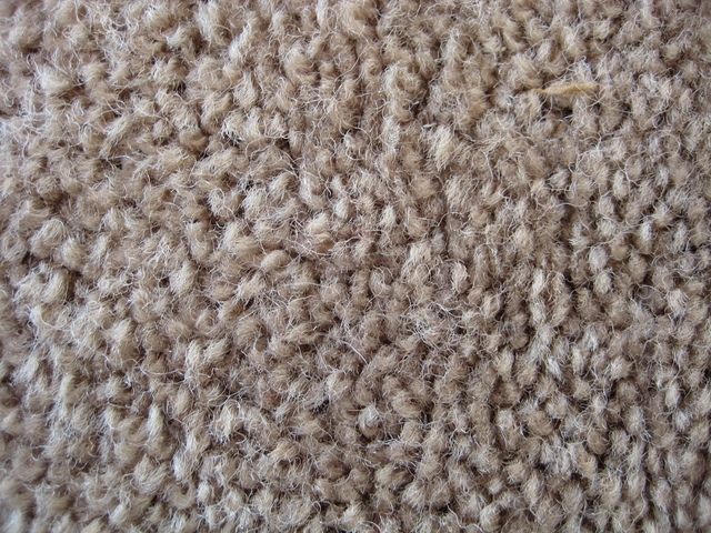 How To Clean Children S Urine From Carpet Ehow