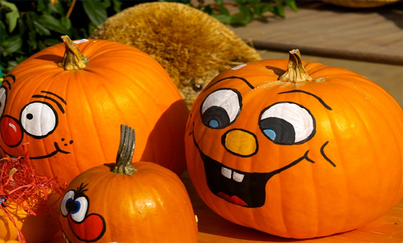 What Type Of Paint Sticks To Paint Pumpkins With