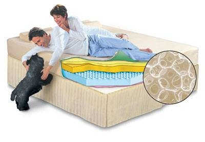differences between tempur pedic sealy posturepedic ehow. Black Bedroom Furniture Sets. Home Design Ideas