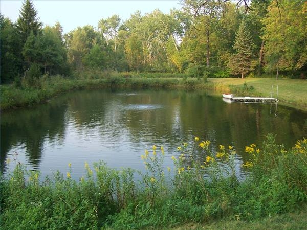 How to build a trout stream gone outdoors your for Ponds to fish in near me