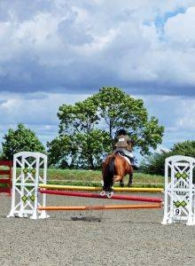 How to Build a Show Jumping Course