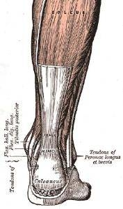 Can You Heal Bone Spurs Naturally