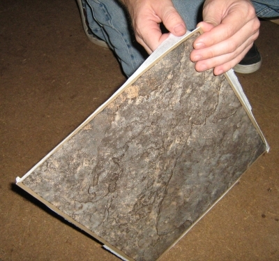 How to lay peel stick tiles over linoleum ehow for Stick down linoleum tiles