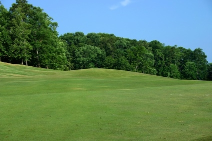 How To Take Care Of Bent Grass Greens Healthfully