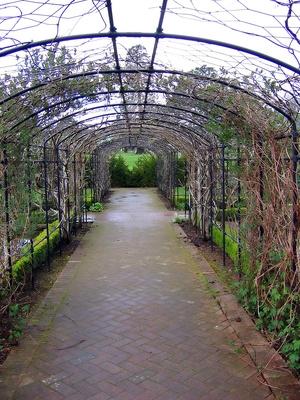 how to build a grape arbor arch trellis with a pergola diy building an arbor trellis plans free