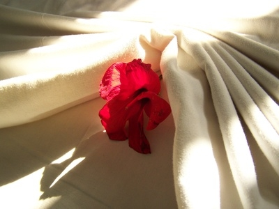 how to get rid of dried blood stains on sheets