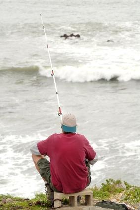California Fishing License Fees