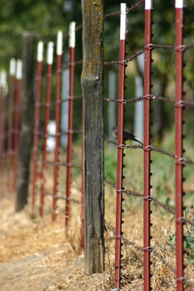 DIY Simple Garden Fence Ideas eHow