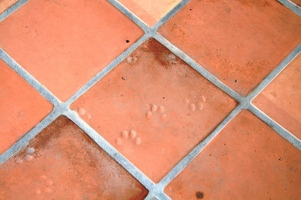 How to clean solutions for unsealed ceramic tile grout for How to clean unsealed concrete floors