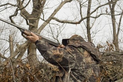 The Best Counties in Kentucky for Deer Hunting