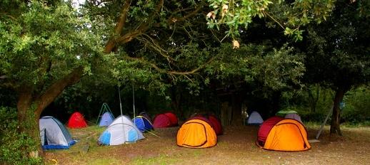Campgrounds At Buena Vista Lake In Bakersfield California