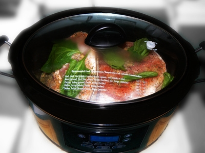 How to cook chicken and rice in a pressure cooker ehow for Pressure cooker fish