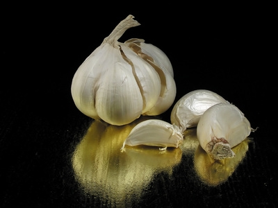 Does Garlic Prevent Fleas In Cats