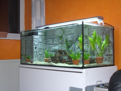 imagitarium automatic fish feeder instructions