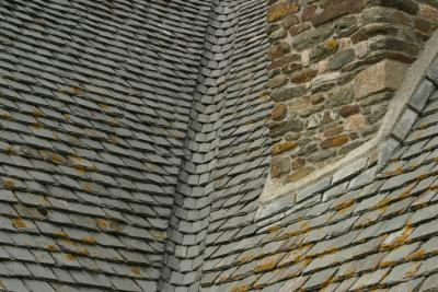 How To Remove Algae From Certainteed Roof Shingles