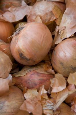 How Deep Do You Plant Onion Sets? | eHow
