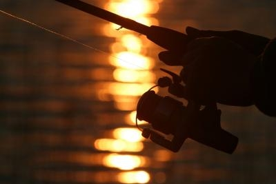 How to Repair a Shakespeare Fishing Reel | Gone Outdoors | Your
