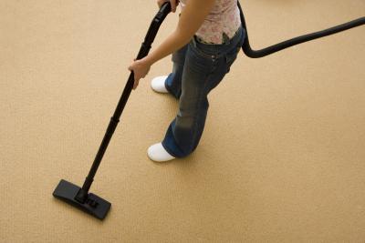 how to kill maggots on carpet