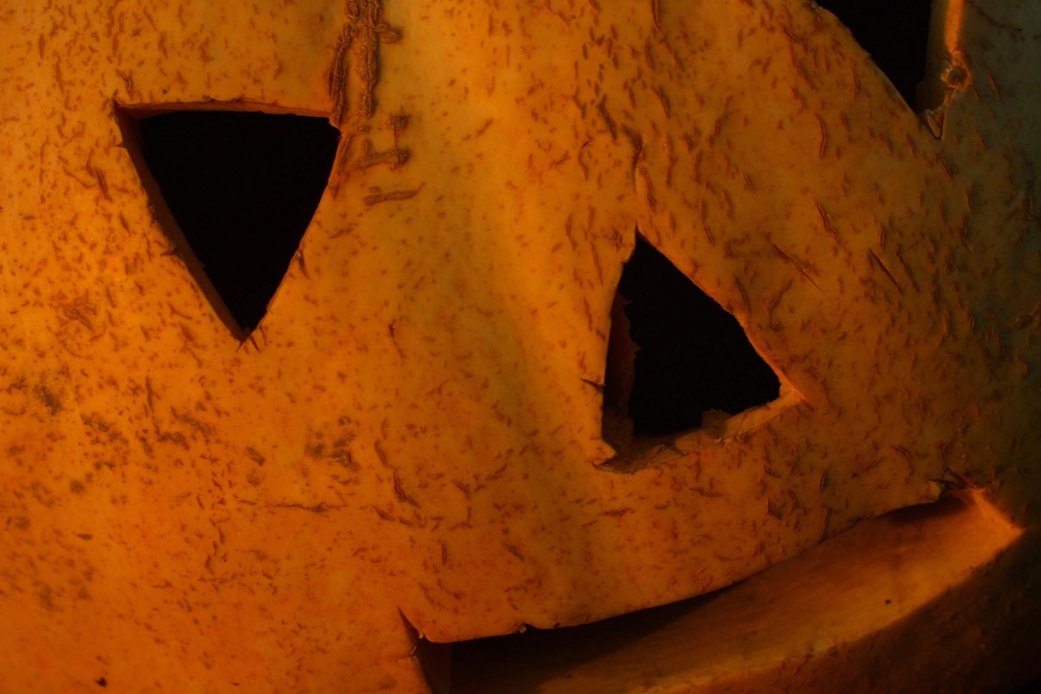 10 Fresh Takes on Halloween Classics