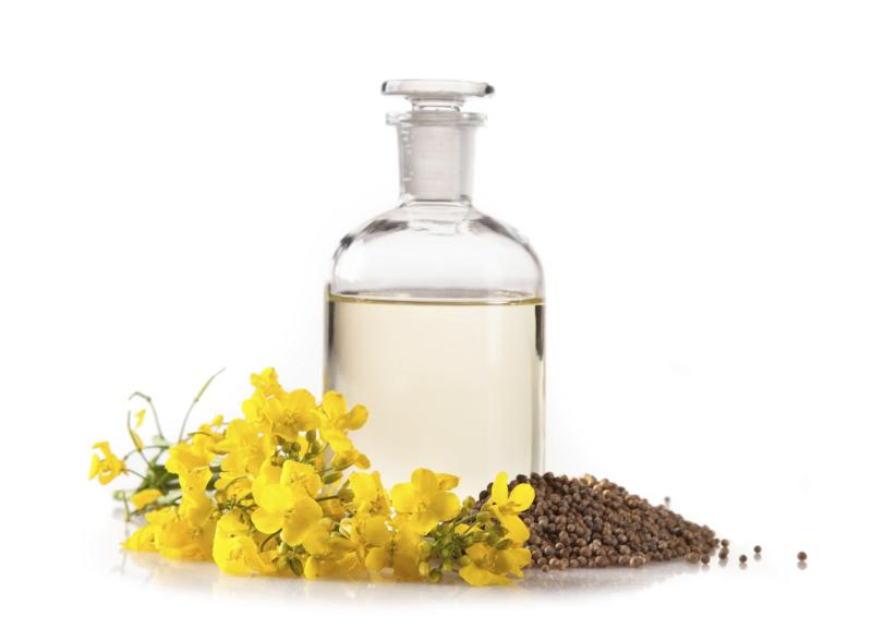 What is expeller pressed canola oil