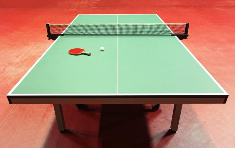 what kind of paint is used for ping-pong tables? | gone outdoors