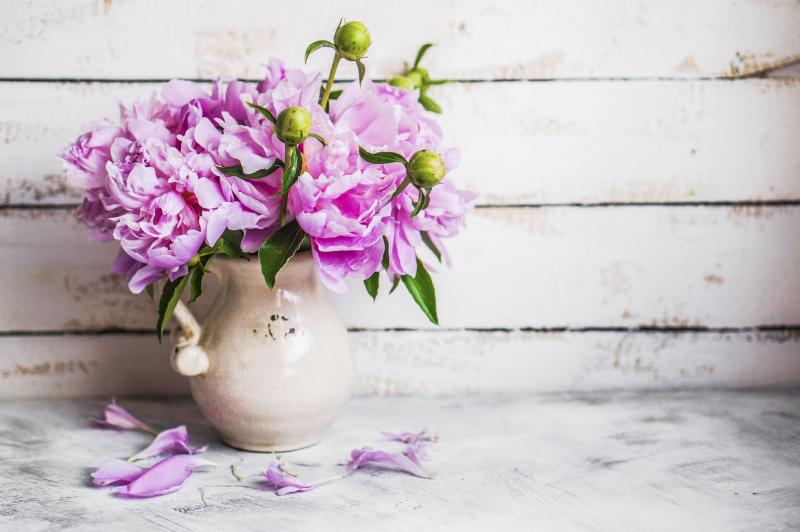 Video How To Cut Back Peonies Ehow