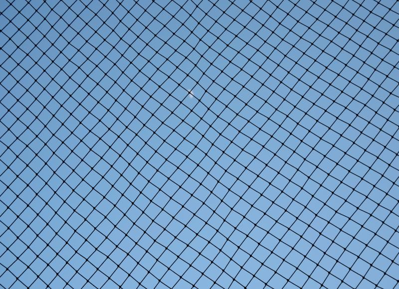 How to Build a Pitching Screen | Healthfully