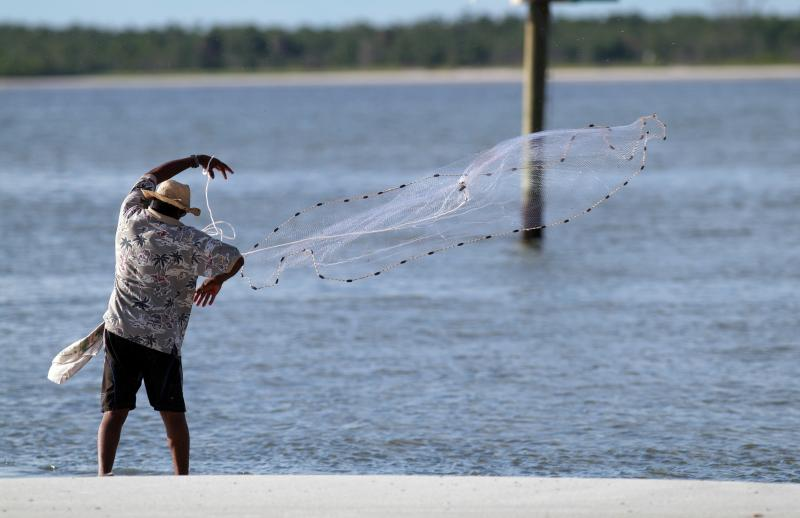How to catch shrimp on the florida gulf coast gone for Saltwater fishing license florida