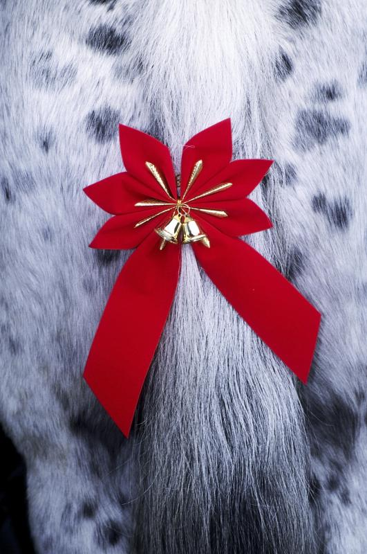Christmas Decorations For Your Horse : How to do a diamond braid on horse ehow