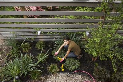 Design a Virtual Garden Online with Pictures eHow