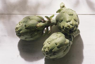 how to grow artichokes from seed