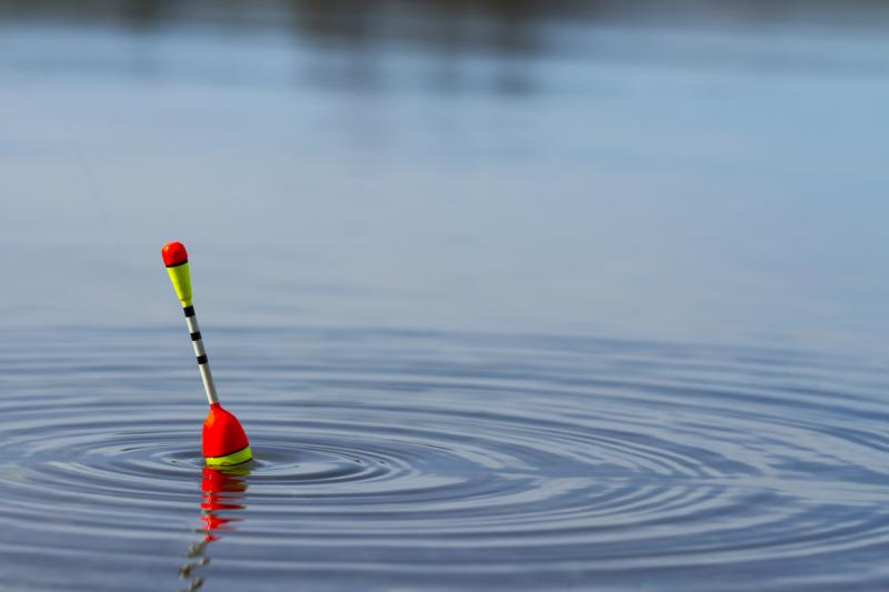 How To Make A Cane Bamboo Fishing Pole Gone Outdoors Your Adventure Awaits