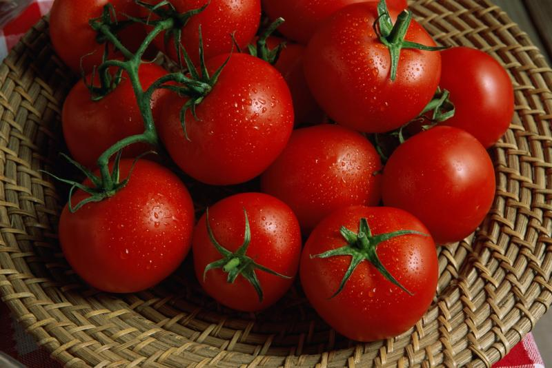 tomato intolerance and digestive symptoms | livestrong, Skeleton
