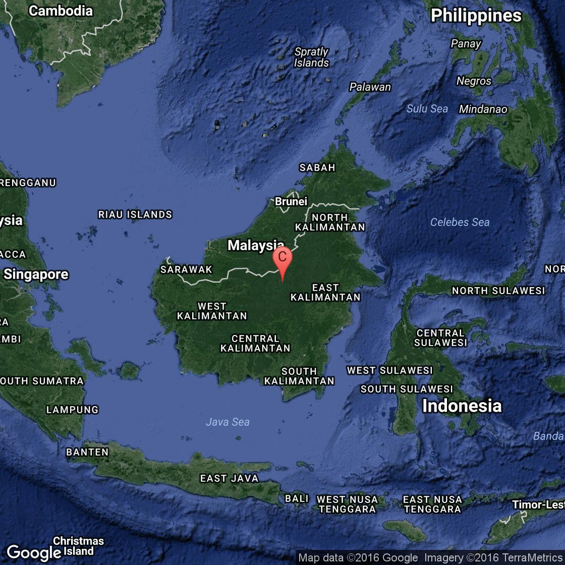 Borneo Island: Singles Travel To Borneo