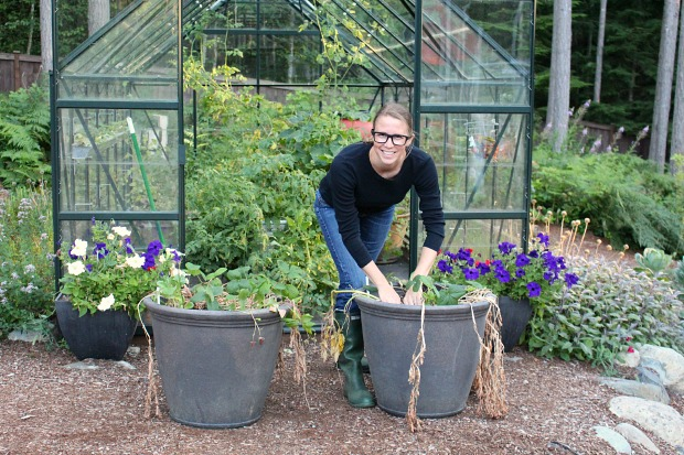 The battle of the veggies organic vs nonorganic soil part 4 ehow home ehow - Best soil for container gardening ...