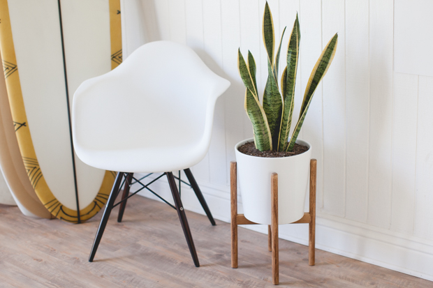 How To Build A Midcentury Inspired Plant Stand Hunker
