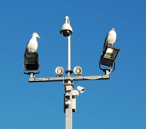 How to install high pressure sodium security lighting homesteady aloadofball Choice Image